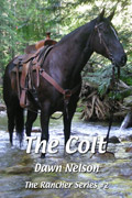 The Colt cover